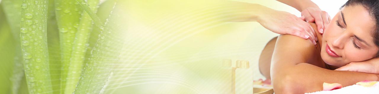 Massage-Spezialausbildungen im WIFI