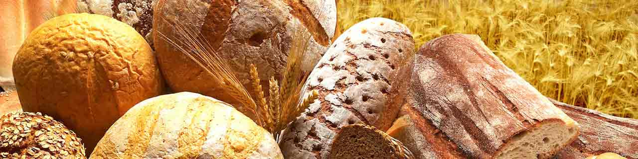Bäcker: Kurse für Lehrlinge & Meister im WIFI