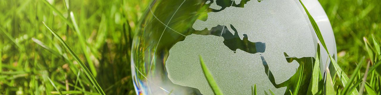 Umweltmanagement: Ausbildung im WIFI