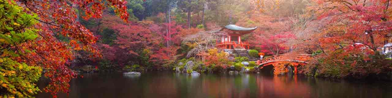 Japanischkurs: Japanisch im WIFI Sprachkurs lernen