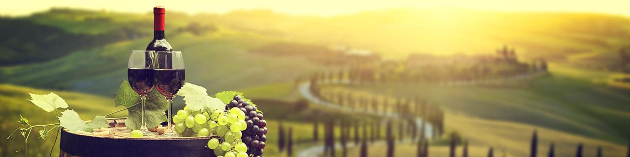Freizeitseminare Wein